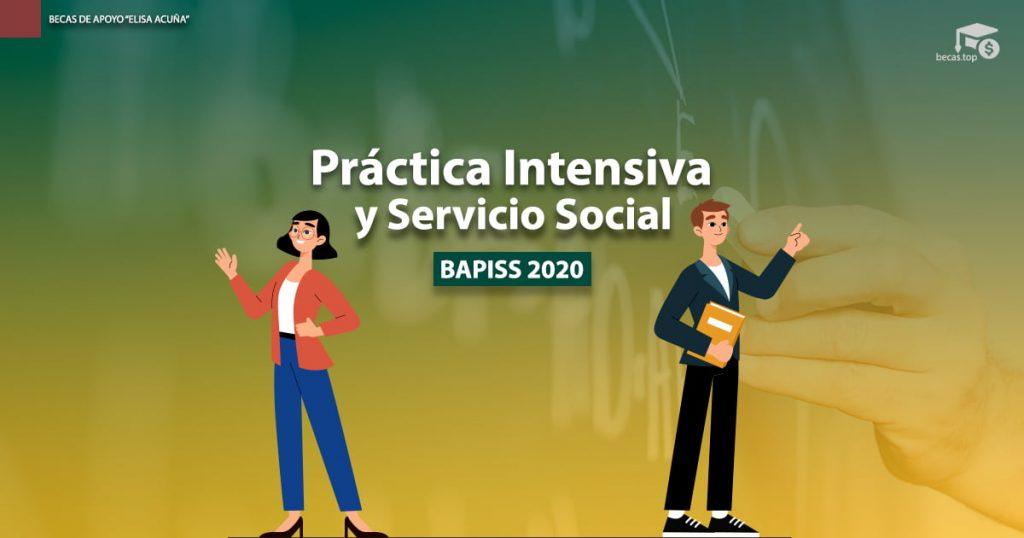 BAPISS 2020
