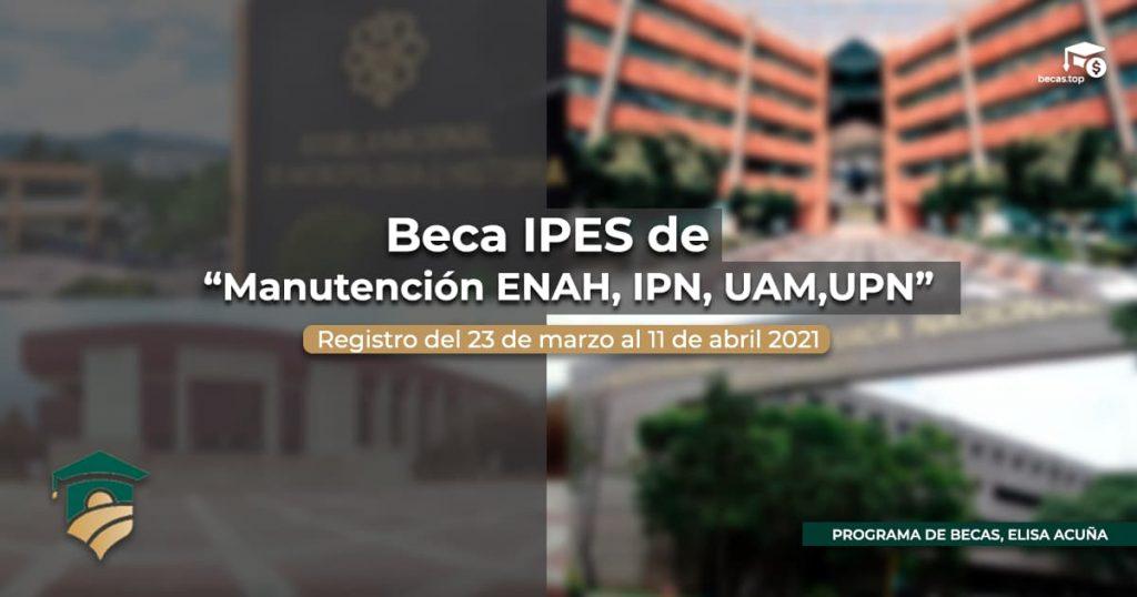 Beca IPES de apoyo a la manutención