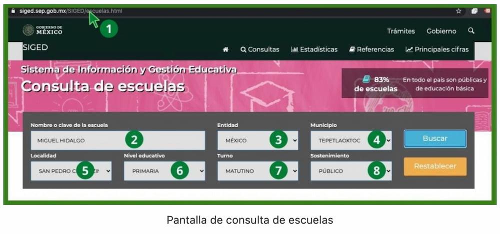 pantalla de consulta